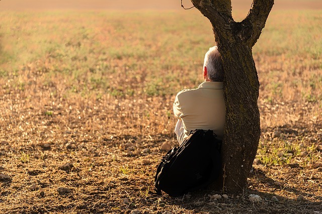 man sitting by tree looking away