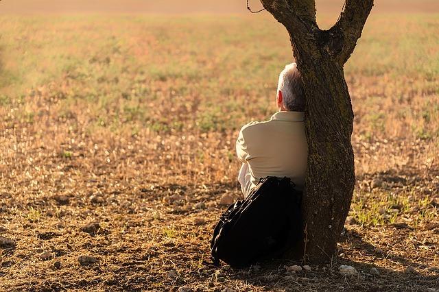 man sitting by tree looking away